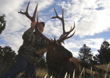 A good look at a nice bull elk taken in mid Oct.