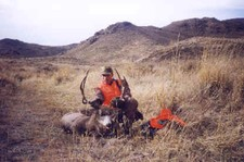 This mule deer buck was taken on the last day of the hunt.