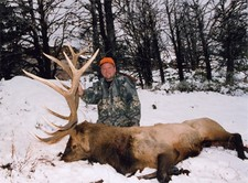 Dan Cabela shows off his trophy bull elk.  Bar-Nunn was honored to host the Cabela family for their 2002 family hunt.