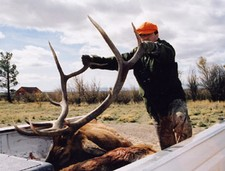 Mark Nethery shows off a nice 6x6 bull taken during the 2002 season.  This elk was taken out of a herd of 150 head or more.