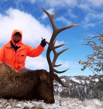 Scott Auld shows off his trophy bull elk.  This 6x6 bull elk was taken shortly after his hunting partner took a very similiar six point bull.